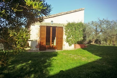 Scenic cottage among olive groves - House