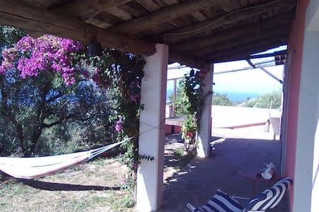 Casale panoramico sul mare ed ulivi - Haus