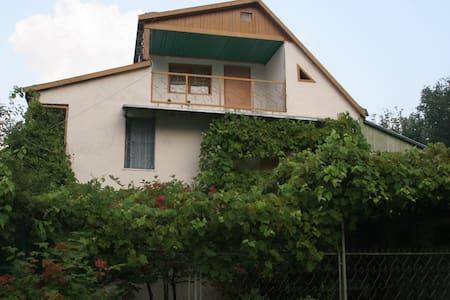 Экологичный коттедж у склона горы - Casa