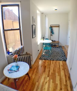 Bright 1 BR apt with roof access - New York - Apartment
