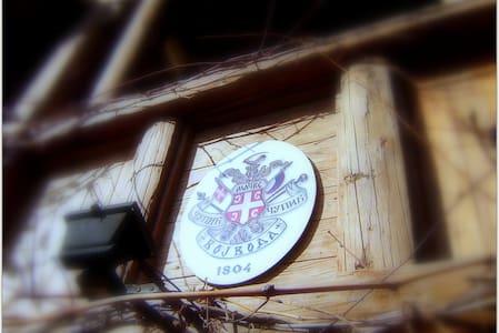 Historical House Gallery Tavern - Мачванска Митровица - Haus