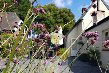 Terras3, een zonnig tuinhuis met alle privacy - Nuland