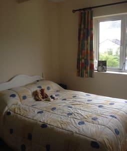Large en suite double room in spacious apartment - Apartment