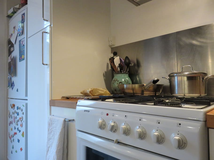 Gas stove and oven