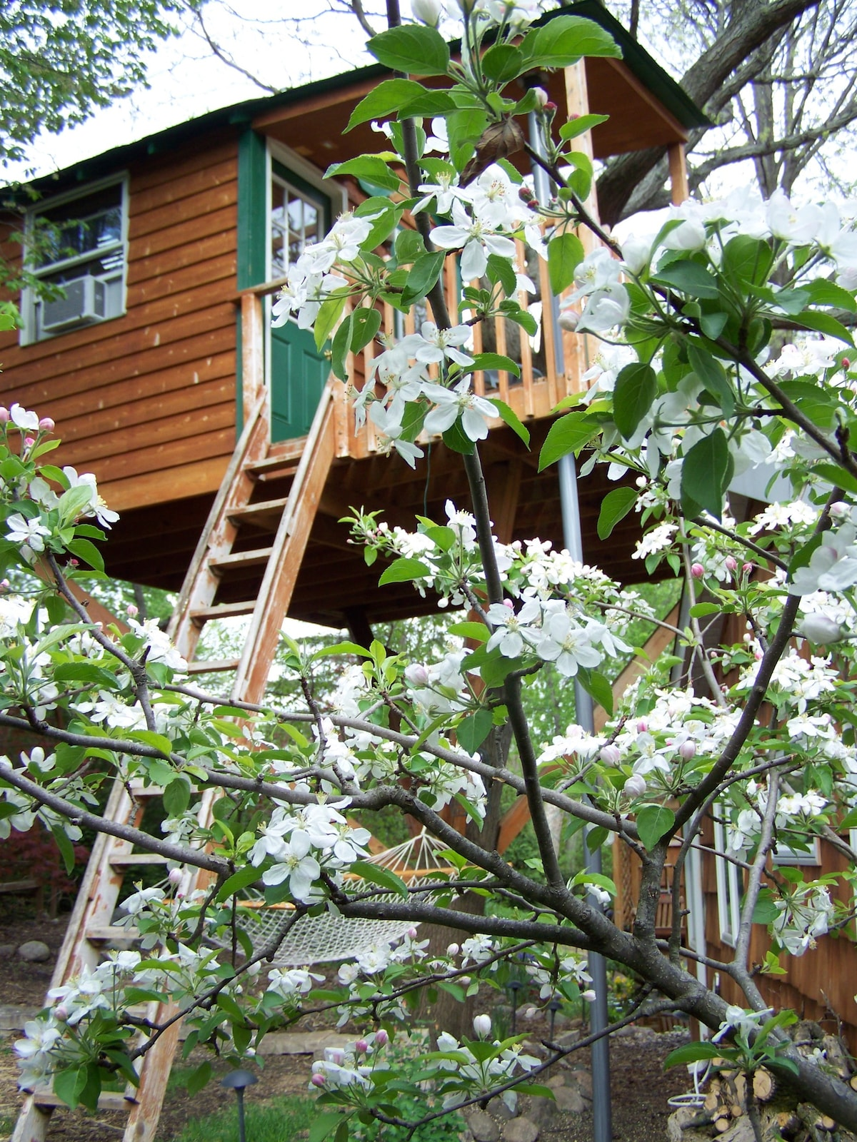 Magical Tree House, Airbnb Rent a Tree Hut for a Night Located in Chicago, Illinois