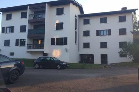 Appartement à 10 min de Geneve - Daire