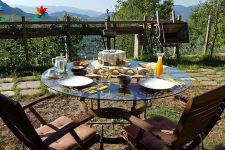L'Iperico, un luogo immerso nel Bosco - Cerro Al Volturno - Villa