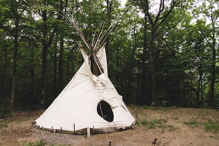 Magic Forest Farm Garden Tipi - Coeymans Hollow - Tipi
