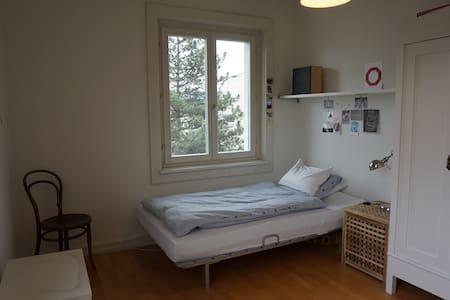 Quiet and cosy room near Mt. Pilatus and city - Kriens - Apartment