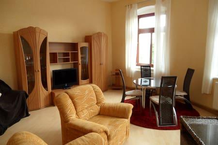 Gemütliche Wohnung  im Erzgebirge - Apartment