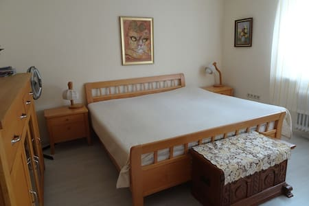 2 spacious guestrooms in the heart of Breisach - Breisach am Rhein