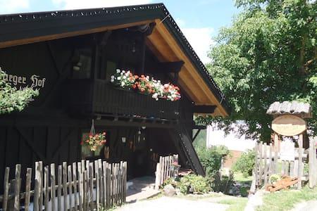 Burgerhof Farm - Panorama Apartment - Jenesien