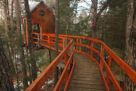 Treetop Sanctuary - Rumah atas pokok