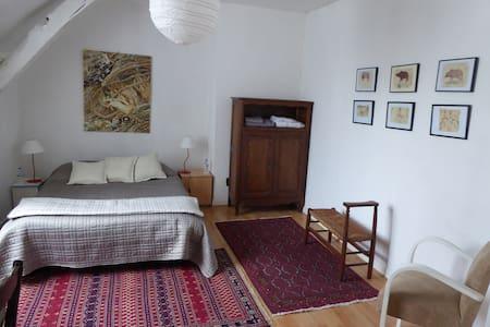 Chambre d'hôtes dans maison de charme - Briollay - Bed & Breakfast