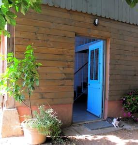 cabane de jardin tout confort - Cabin