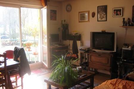 Grand 2 pièces de 50 m2 avec balcon - Bures-sur-Yvette - Appartamento