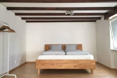 Comfortable spacious Studio.. - Sankt Gallen - Apartment