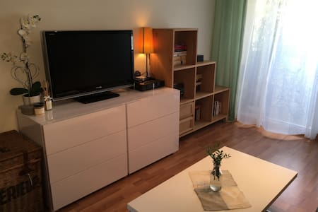 Charmed and comfortable studio in area of artist. - Apartment