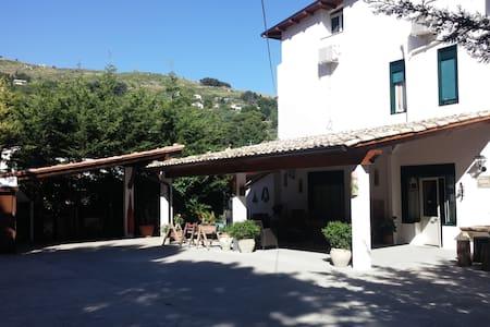 B&B nel BORGO più BELLO D'ITALIA cam singola N.8 - Sambuca di Sicilia - Bed & Breakfast
