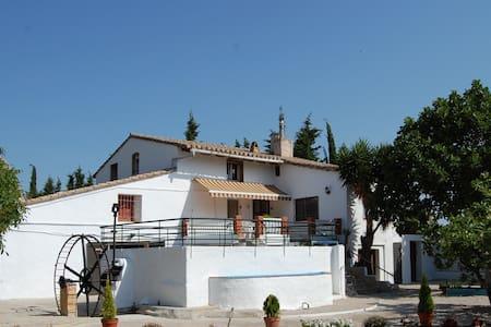 Huerto de Marsella - Roquetes - Casa