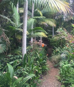 private studio in tropical paradise - Ewingsdale - House