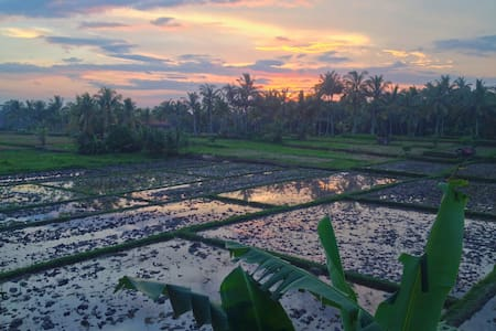 CENTRAL UBUD-SPECTACULAR RICEFIELD & VOLCANO VIEWS - Villa