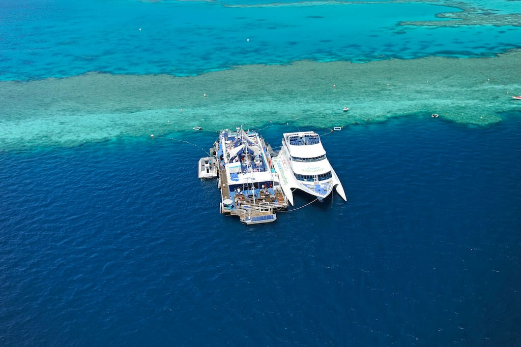 Reefworld, Hardy Reef