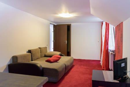 Flat2 near by Dracula Castle 4 pers - Moieciu de Jos - Apartment