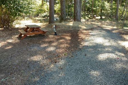 Private RV site for your RV...near Fern Ridge Lake - Eugene - Inny