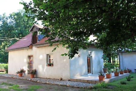 Pałac Heymanna - Stara Kuchnia - Guesthouse
