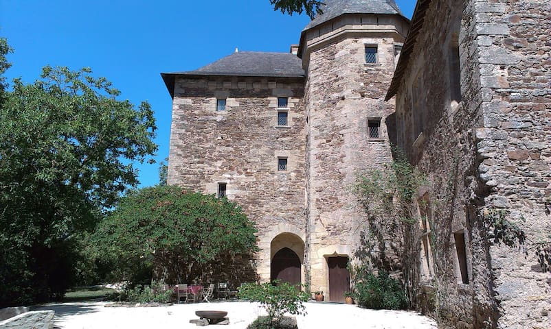 Castle in the garden of France - Castle