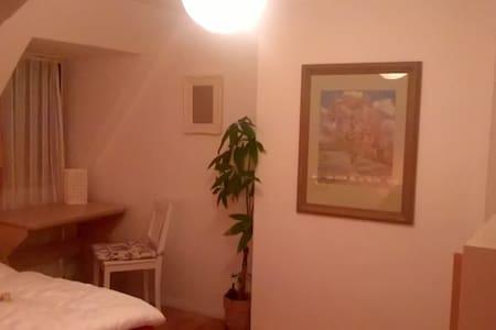 Lichtvolle und gemütliche Unterkunft - Marburg - Appartement