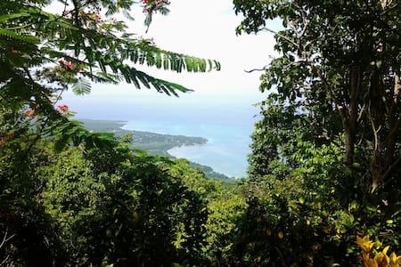 Artist  cabin overlooking Caribbean - Kisház