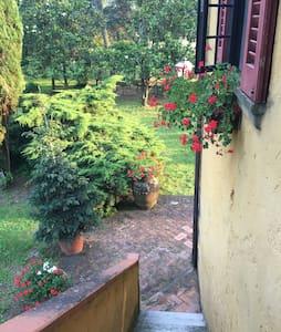 Accogliente Appartamento - Castiglion Fibocchi  - Lejlighed