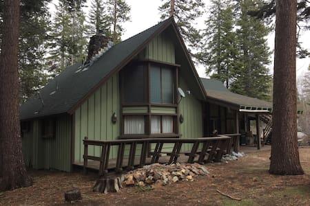 Huge Cabin in the Giant Sequoia's! - Ponderosa/Springville - Kisház