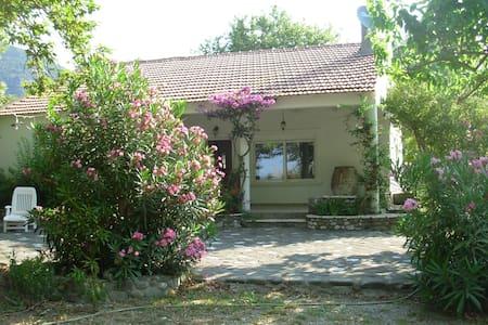 Goitia   Seaside villa   Skaloma Nafpaktos - House