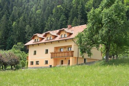 Ecological- tourist farm Kolar - Ljubno ob Savinji