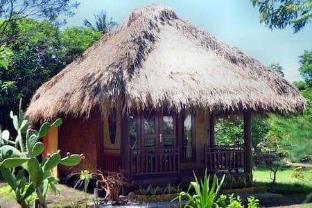 Amigos Bungalow,Gili Meno,Indonesia - Pemenang - Vila