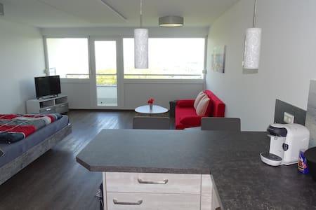 Schöne 1-Zi-FEWO 45 qm mit Bergsicht & Hallenbad - Oberteuringen - Apartamento