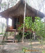 Picture of Family bungalows