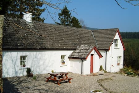 Beautifully Restored Wicklow Holiday Cottage - Aughrim - House