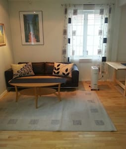 Central located renovated apartment