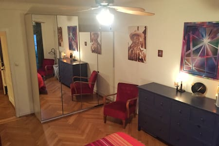 Big room in Plainpalais II - Genève - Apartment