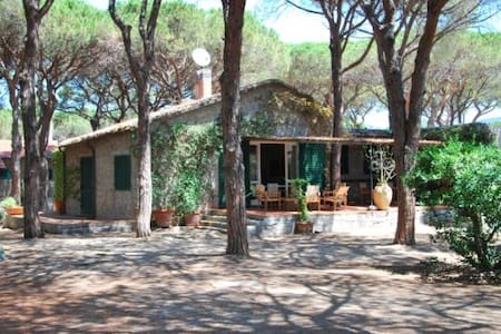 Villa im Wald, vor dem Meer - Marina di Campo - Hus