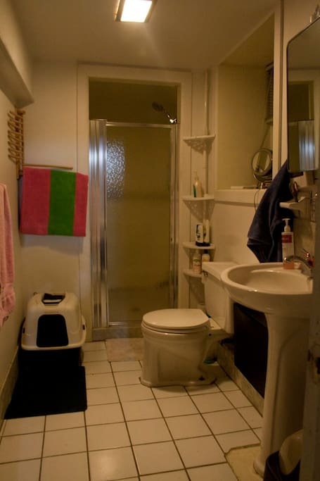 Our clean and spacious Bathroom. Fresh towels provided for all guests. :)