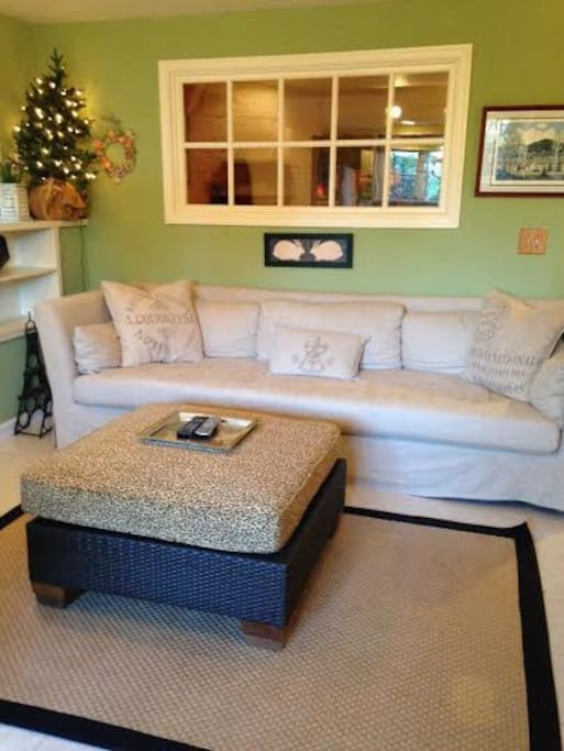 Cozy living room with cable television