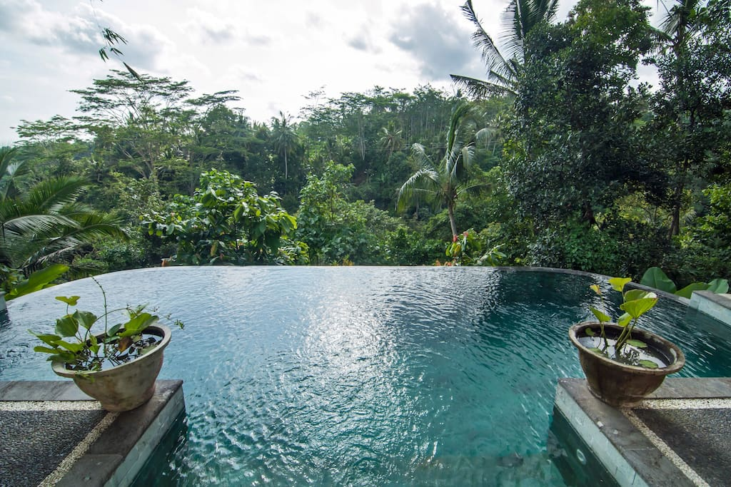 Infinity edge pool is sterilsed by silver ionisation,
