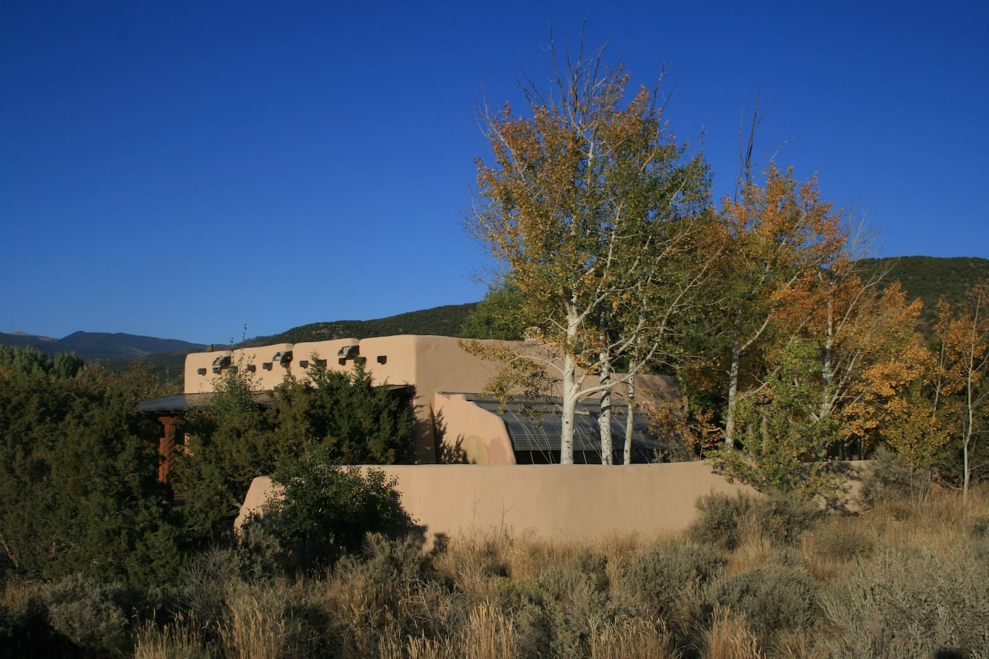 our traditional adobe immersed in its southwest environment (note the blue sky)