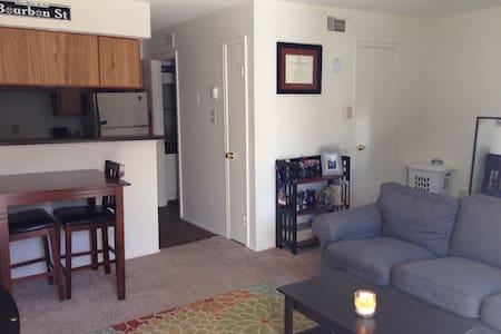 Cute, cozy studio in South Austin - Apartment