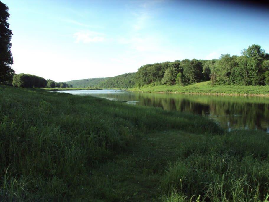 Local Delaware river swimming! canoe! rafting access.